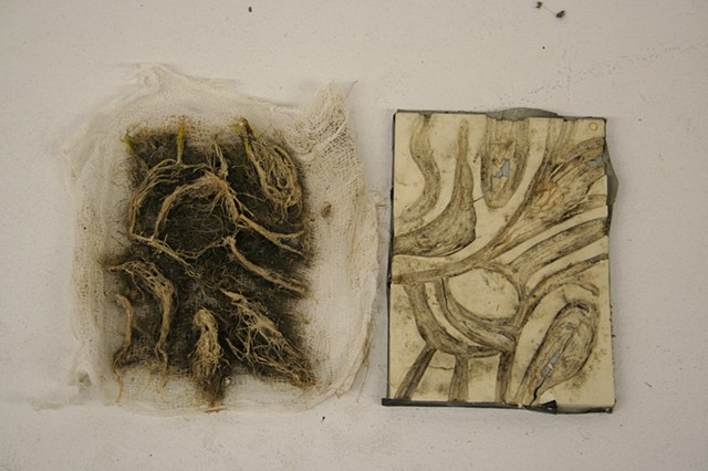 Sprout Sample of linoleum carvings and Rye seed plantings