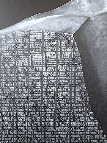 Rosetta Binary Stone (Detail)