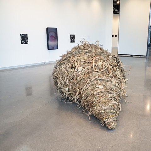 Reap (Partial installation view)