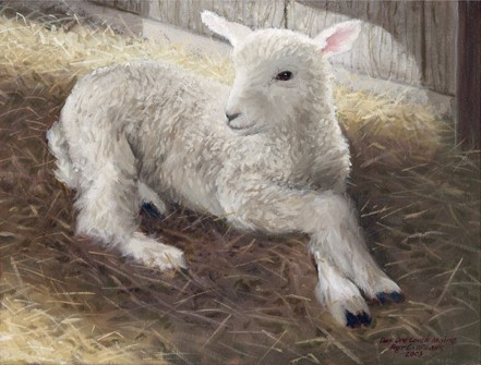 """Lamb, Day One"""