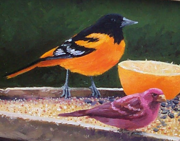 Oriole and Purple Finch
