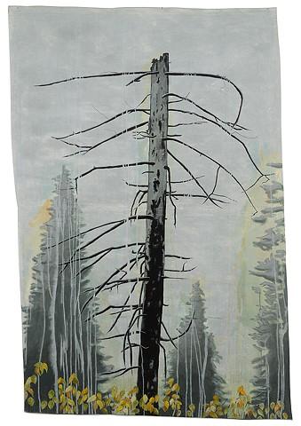 VERTEBRAE Mt Spokane, WA