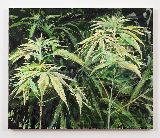 painting of marijuana