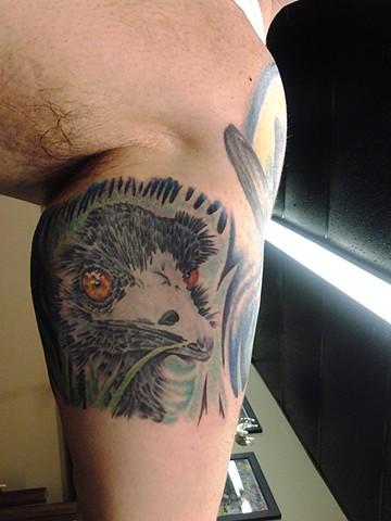 Ryan's Emu