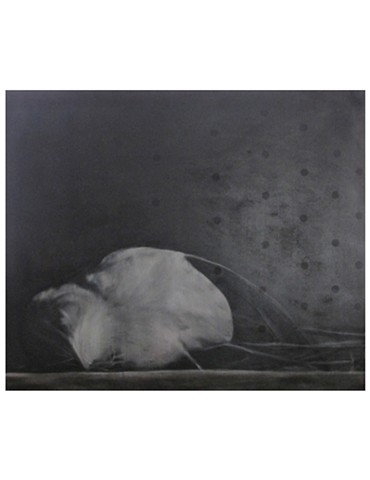 sleeping bird, death of marat, dots and bird, dead bird