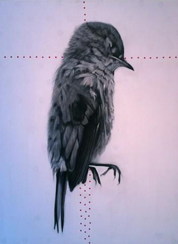 dead bird, sleeping bird, dots and bird, black and white bird