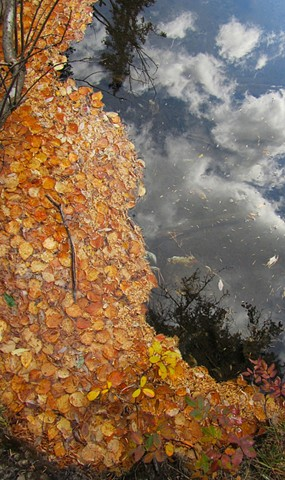 autumn leaves, sky,reflection