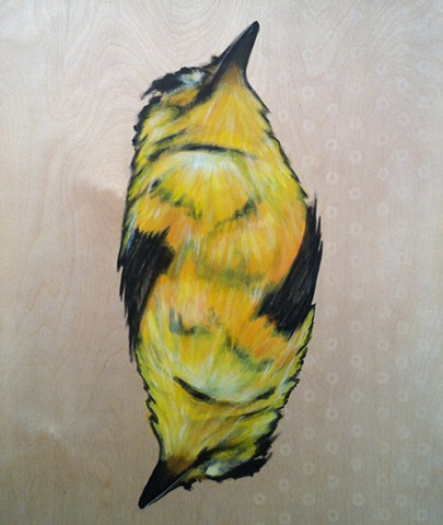 canary, yellow bird, bird painting, face cards, donuts