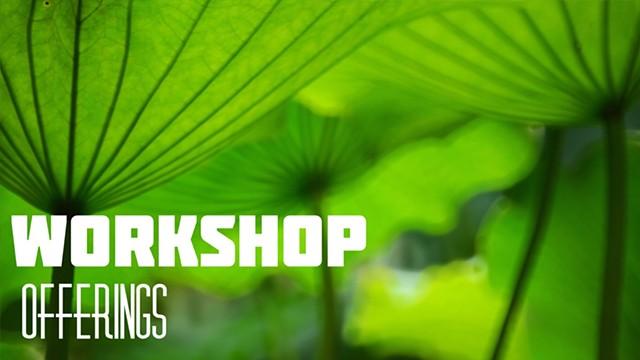 Workshop Offerings