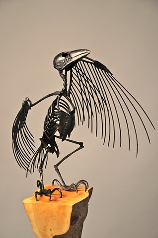 Crow - detail