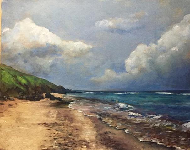 """Cotton garden Bay, oil on canvas, 16""""x20"""""""