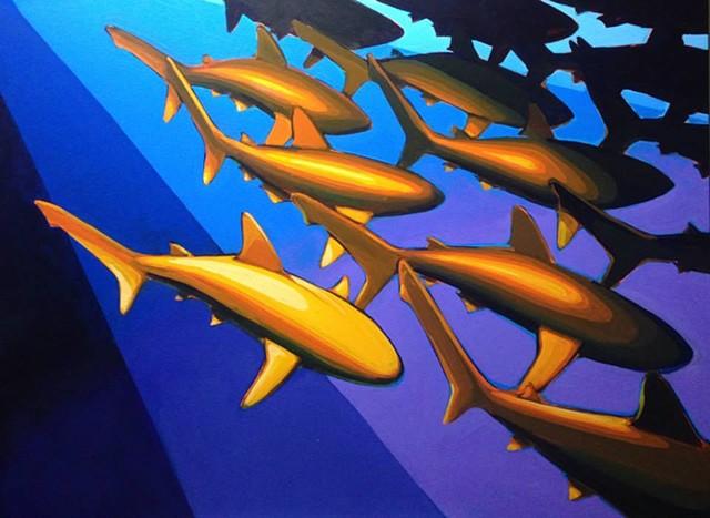 multiple sharks