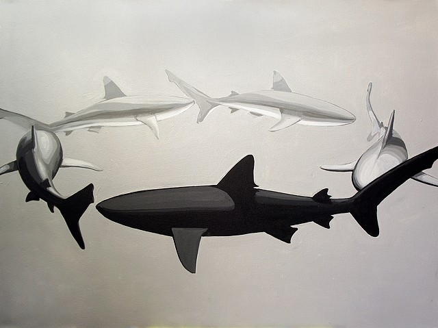 "shark circle 3   30""x40"" acrylic on canvas"