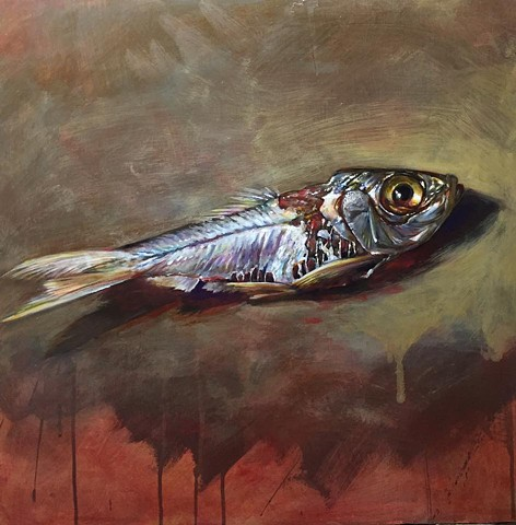 """bait fish"" oil on panel 28""x28"""