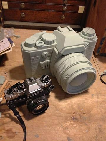 camera enlargement alternate view