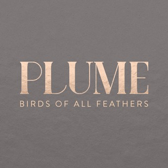 Plume, Milwaukee, WI