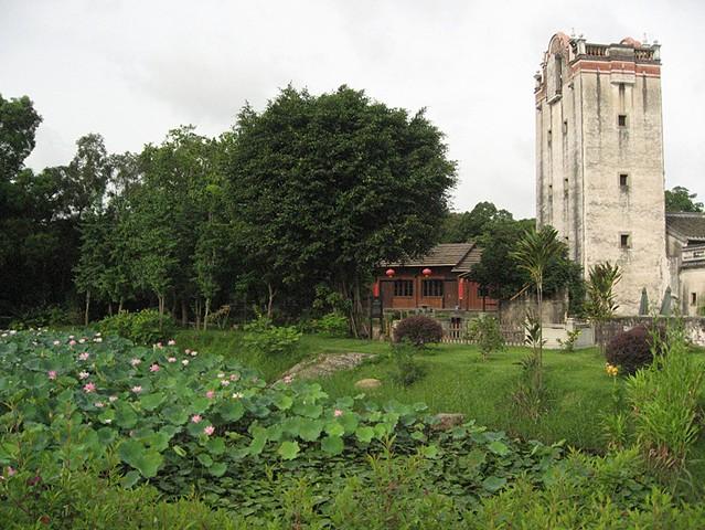 Waterlily pond near housing