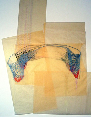 Biomorphic Abstract Drawing Installation by Kathleen Thum