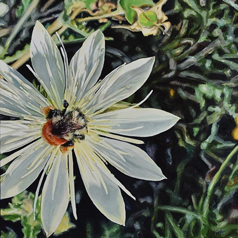 floral painting, bee, pollination, springtime, photorealism, hyperrealism, oil painting, nature painting, flower painting, save the bees