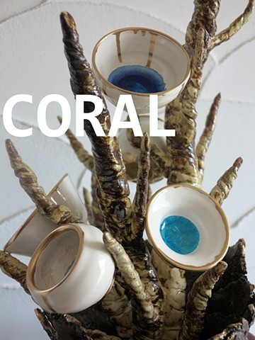 Coral (2016)