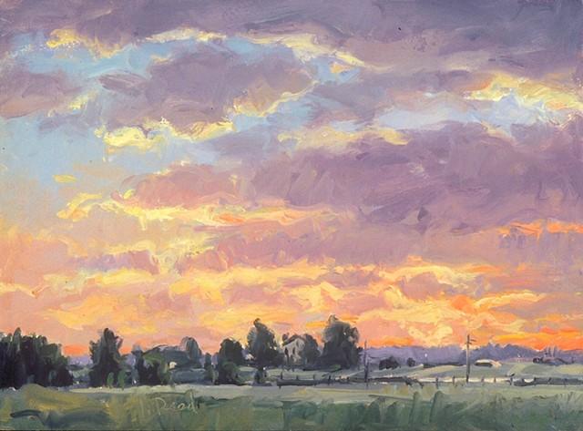 Whitemarsh Sunset I
