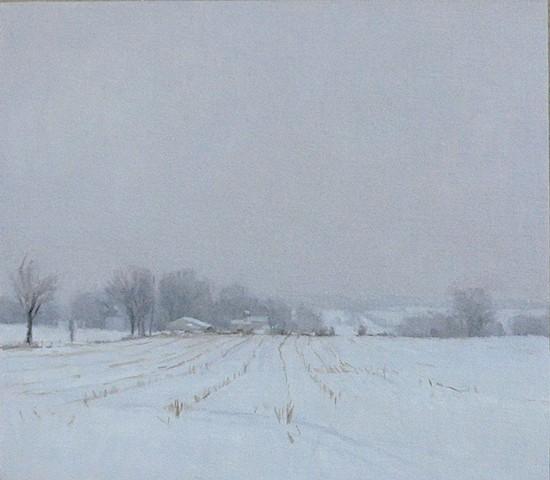Newtown Winter Field