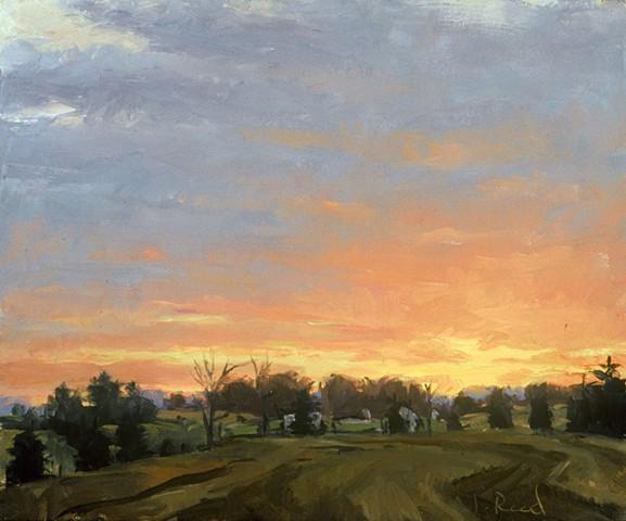 Whitemarsh Sunset III