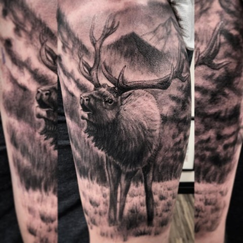 Elk Tattoo By Steve Hayes Black And Grey Black Gold Tattoo Co