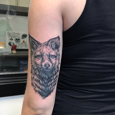 Wolf Tattoo By Amber Strange Black and Grey Black Gold Tattoo Co
