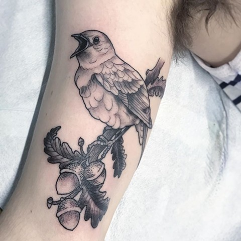 Nightingale Tattoo By Jess Alther Black and Grey Black gold Tattoo Co