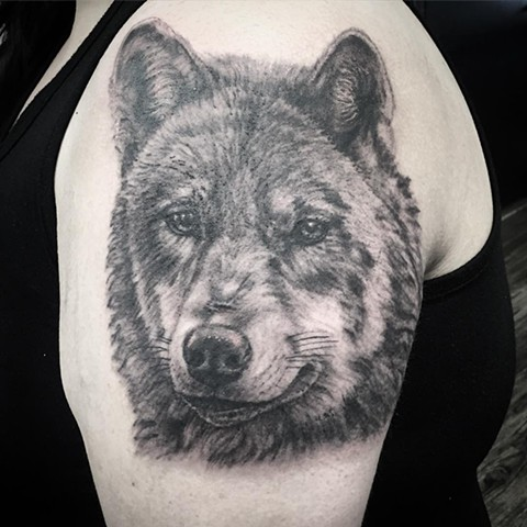 Wolf Portrait Tattoo By Steve Hayes Black And Grey Black Gold Tattoo Co