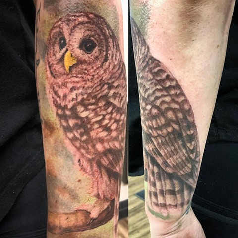 Owl Tattoo By Steve Hayes Color Black Gold Tattoo Co