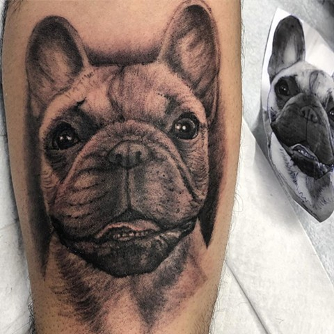 Dog Portrait Tattoo By Steve Hayes Black And Grey Black Gold Tattoo Co