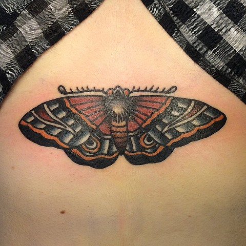 Traditional Moth Tattoo By Spencer Evans Color Black Gold Tattoo Co