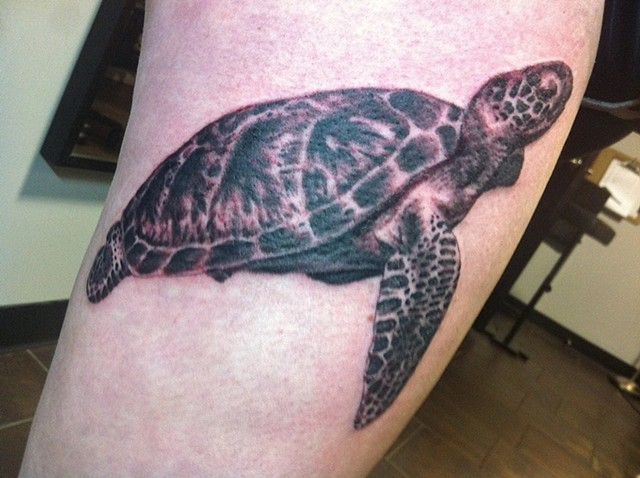 Turtle Tattoo By Ashley Hoff Black And Grey Black Gold Tattoo Co