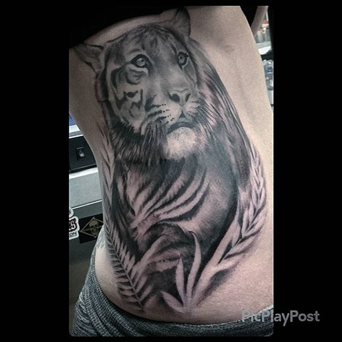 Tiger Tattoo By Ashley Hoff Black And Grey Black Gold Tattoo Co