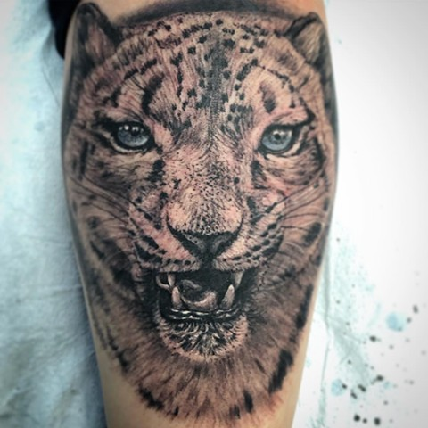 Snow Leopard By Steve Hayes Black And Grey With Color Black Gold Tattoo Co
