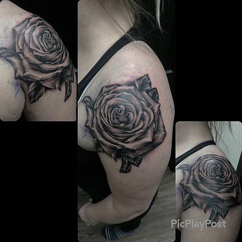 Rose Tattoo By Ashley Hoff Black And Grey Black Gold Tattoo Co
