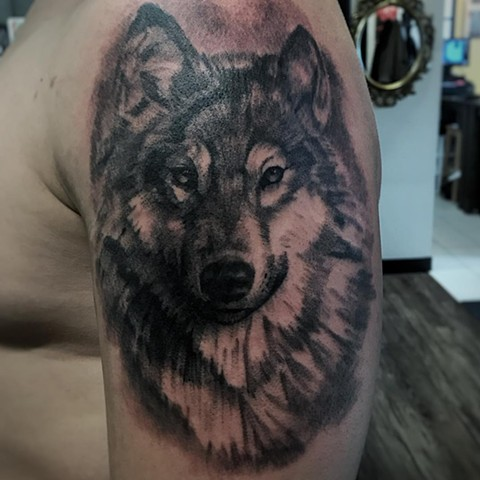 Wolf Portrait Tattoo By Alan Coates Black And Grey Black Gold Tattoo Co
