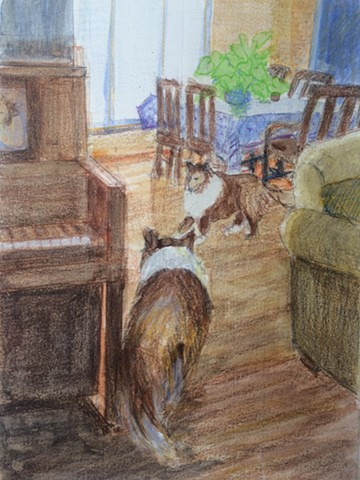 shelties, piano, drawing, watercolor