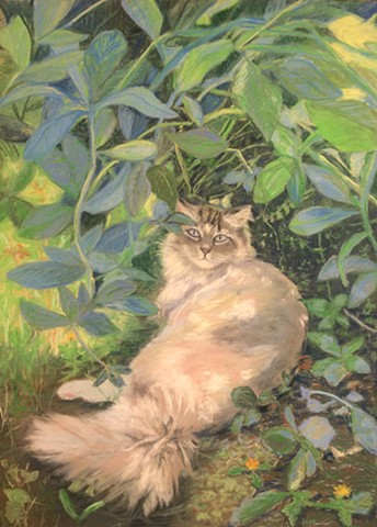 Cat rests in shade on sunny day, cat, white cat, cat resting, shade, pastel, drawing, painting