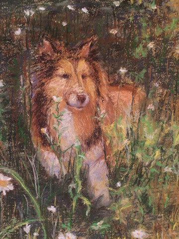 detail - Dog in the Daisies  (sold)