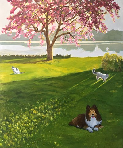 Sheltie, dog, cats, crabapple tree, blooming crab tree, spring