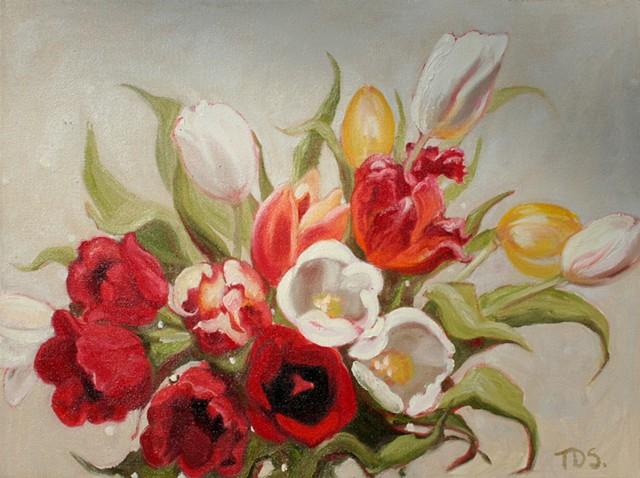 Tulip Burst