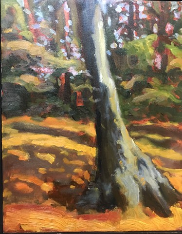 """Falmouth Forrest"", $175"