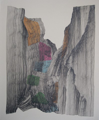 drawing, nature, abstract,memory,  process, performance, ink