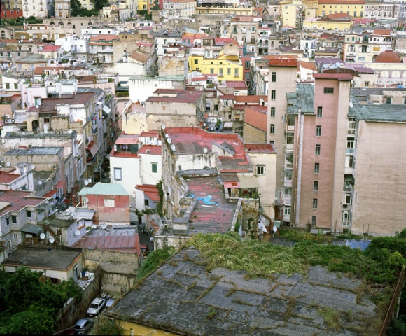 Napoli Study # 5