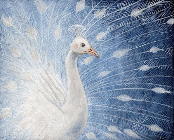 a painting of an albino peacock in egg tempera by jon gernon