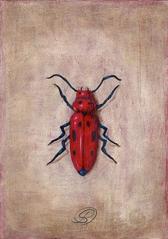 An acrylic painting of a spotted red beetle by Jon Gernon