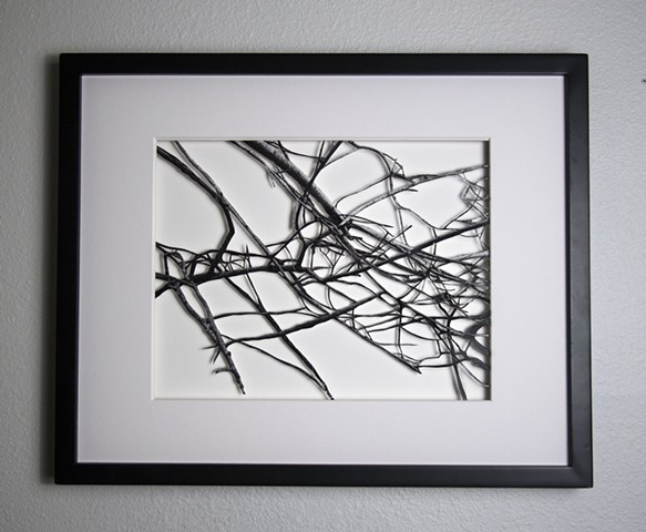 02 Xacto hand cut photograph  Work sold unframed